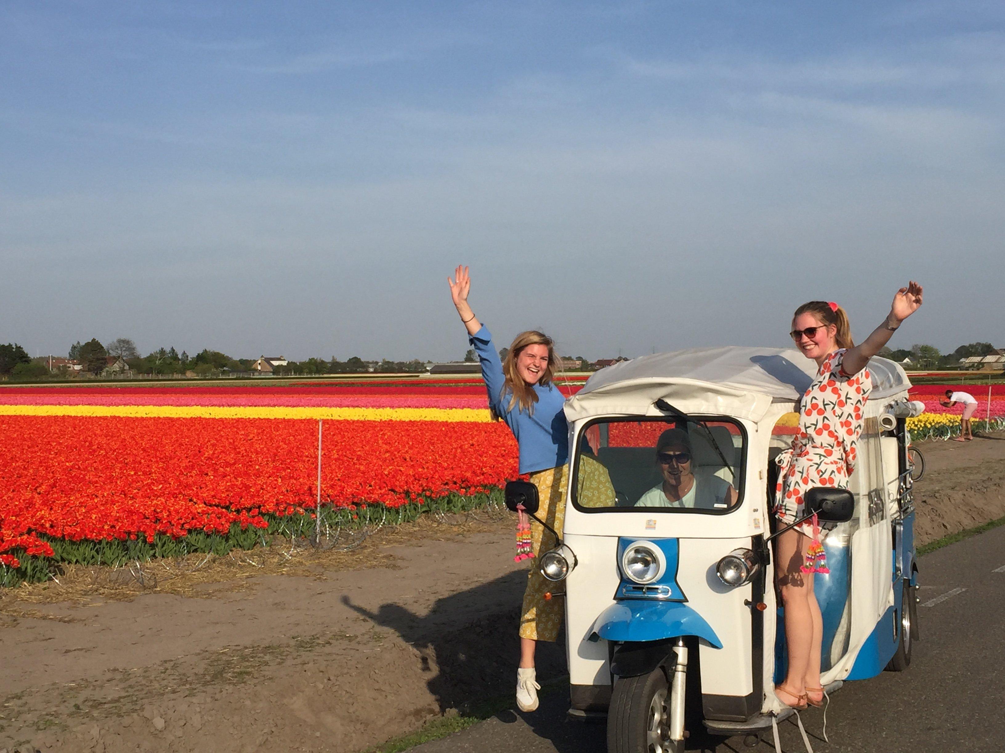 TukTuk Tulip Experience